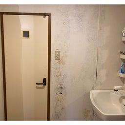 画像 脱衣所の壁がカビだらけ⁉︎ の記事より 1つ目
