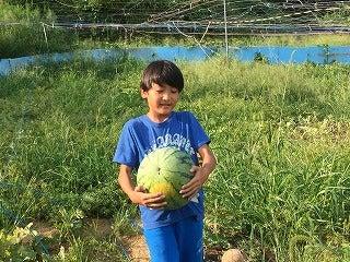 奈良県農業体験 食育セミナー 週末農業サポート シェア畑 YouTubeの記事より