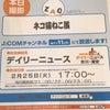 本日2月25日J:COM市川17時〜「ネコ猫ねこ展」.の画像
