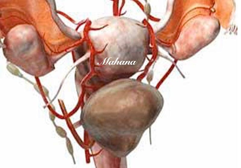 貧血 卵が育たない 不妊治療 体外受精 内膜が薄い エストラーナテープ HMG