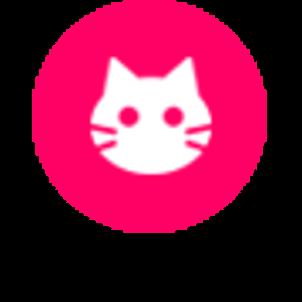 「ネコ・インスタグラム」はじまりました。の画像