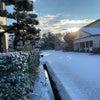 雪化粧の画像