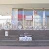 ドッジボール大会(年長組)の画像