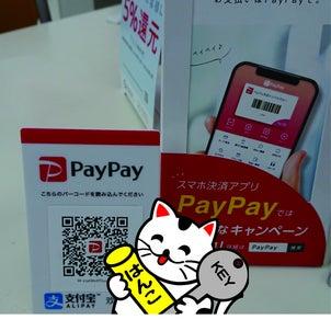 PayPay始めましたの画像