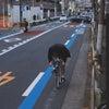 自転車通勤も視野に入れてみませんかの画像