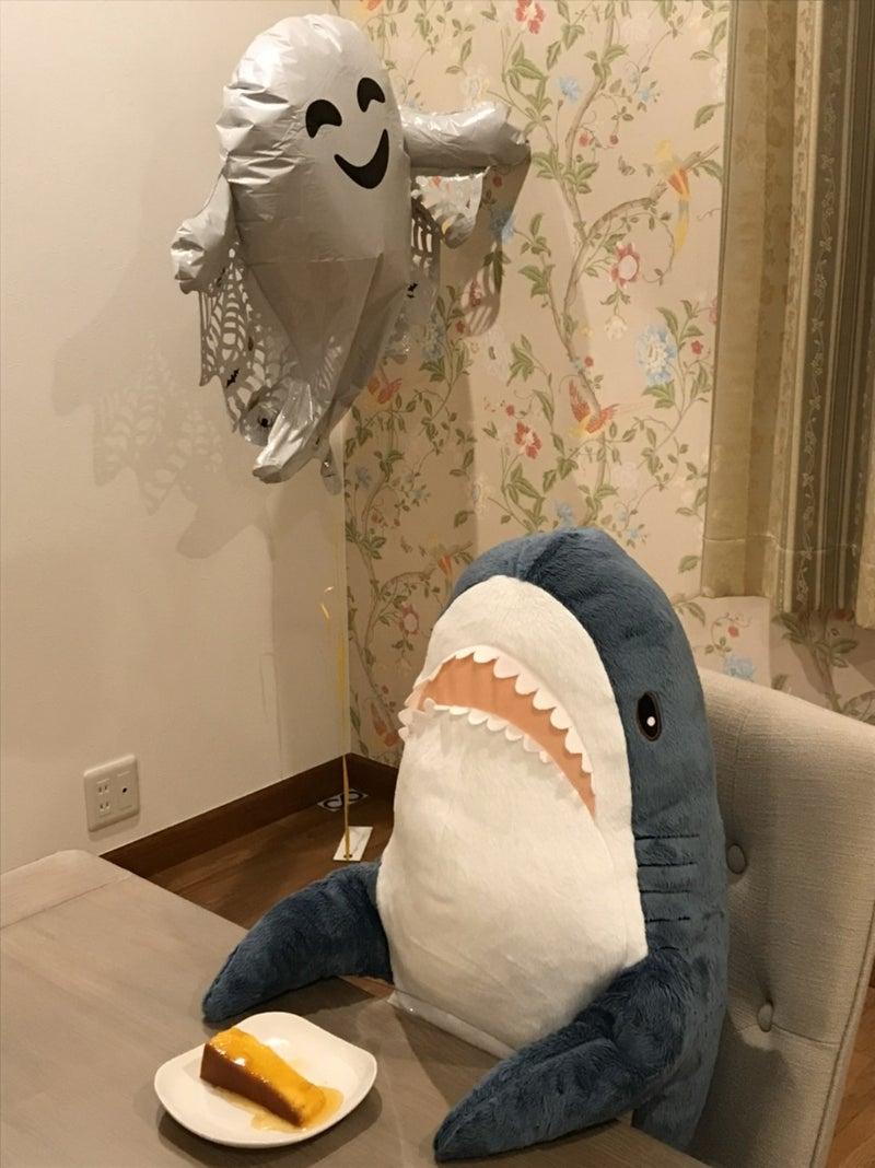 前世 サメ ちゃん