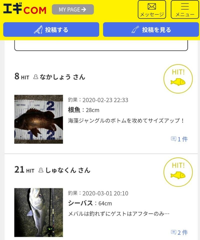 エギ com