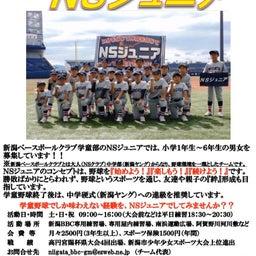画像 学童野球チームNSジュニアからのお知らせ!! の記事より 2つ目