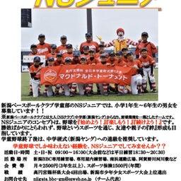 画像 学童野球チームNSジュニアからのお知らせ!! の記事より 1つ目