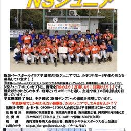 画像 学童野球チームNSジュニアからのお知らせ!! の記事より 3つ目