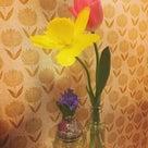 お花とYouTubeの記事より