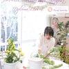 【花育士資格】春のお花で新しい夢へのスタートを応援します♪の画像