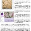 英宮殿に謎の日本製巨大刺繍画、皇室の贈答品か?の画像