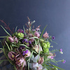 Flower lesson 3.4月の画像