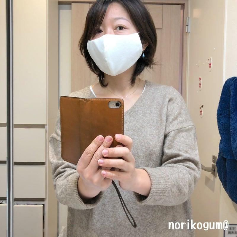 手作り マスク 不織布 挟む