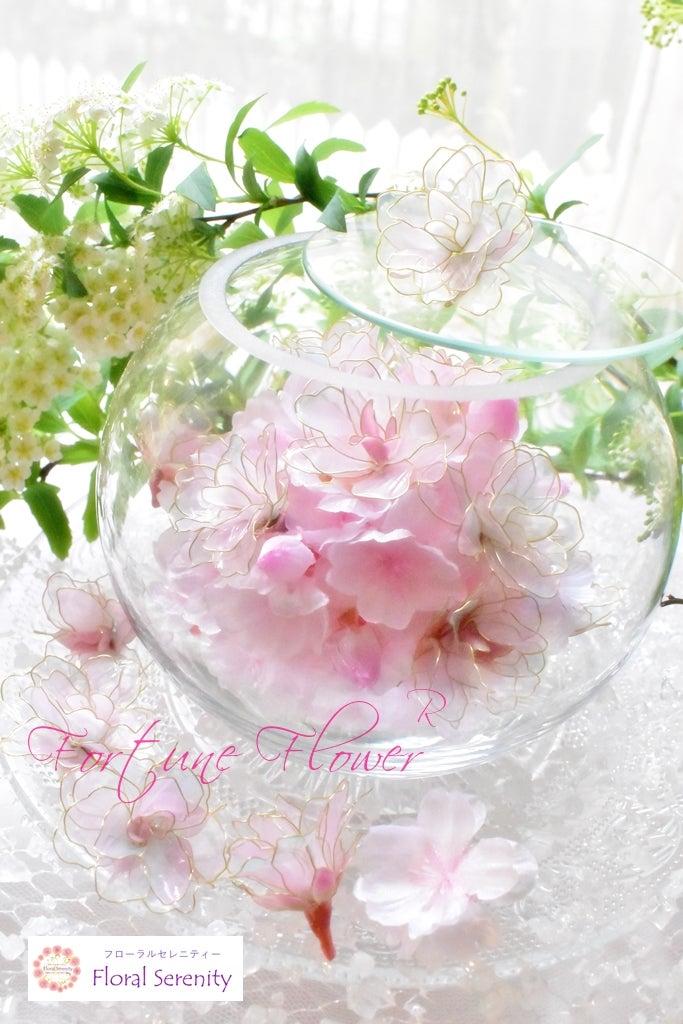 桜の思い出箱