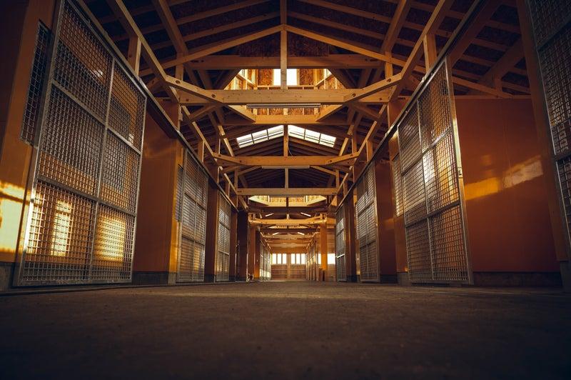 新厩舎 | 引退馬牧場を創る ヴェルサイユリゾートファーム公式ブログ