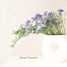【いけばな】ブルーの花での記事より