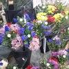 お彼岸花の販売とファンシーグッズの画像