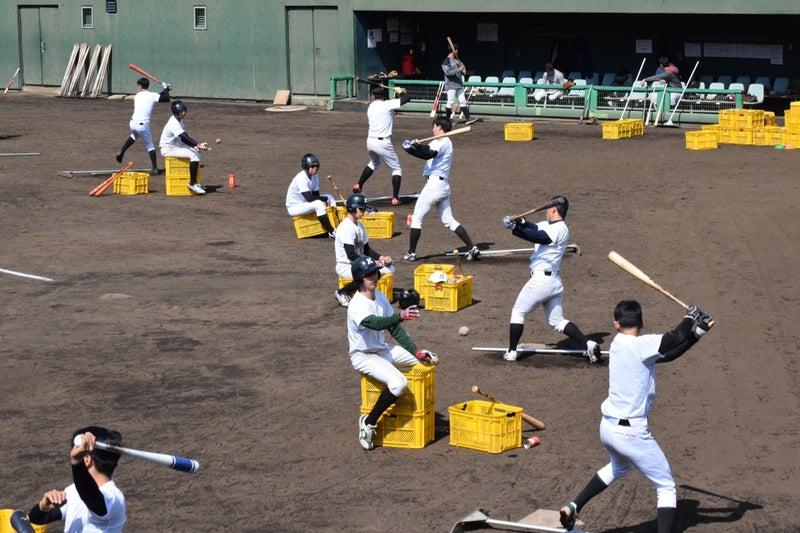 硬式 部 大学 創価 野球