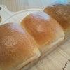 パンに癒される休日(*´▽`*)♡の画像