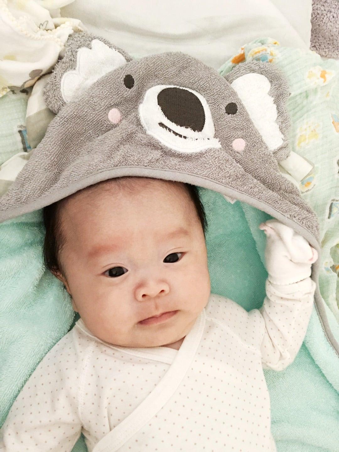 赤ちゃん キンタロー