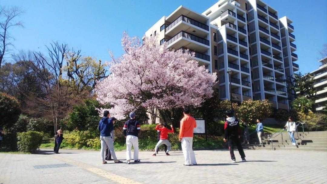暖かい春の陽気と暖かいOBの記事より