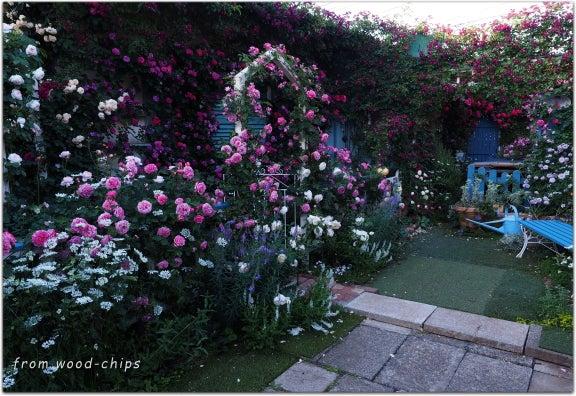 立川市 薔薇の庭