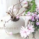 桜だけじゃないですよ♬の記事より