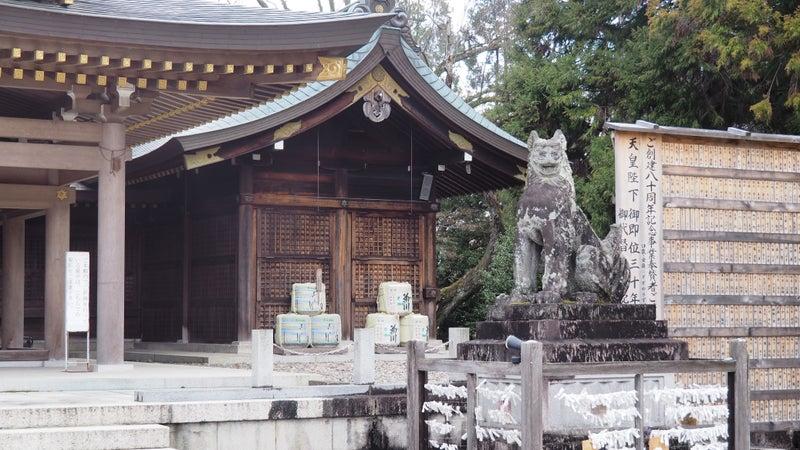 鵜飼桜と岐阜護国神社2020-7