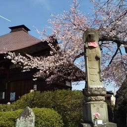 画像 秩父巡礼は、桜の季節になりました❗️ の記事より 2つ目