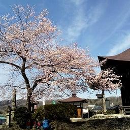 画像 秩父巡礼は、桜の季節になりました❗️ の記事より 1つ目