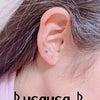 次女のお耳の画像