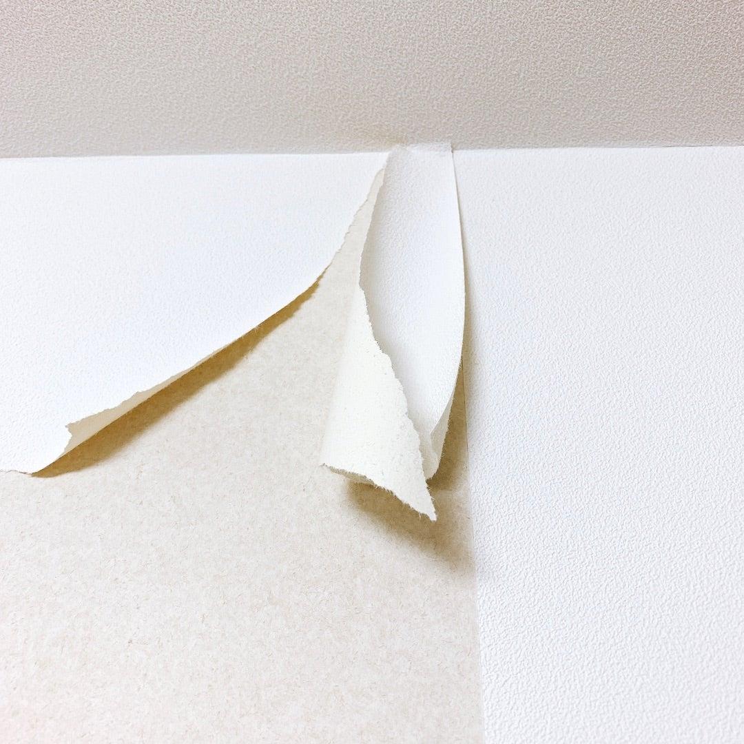 壁のペイント1 壁紙をはがす 医食同源 Byりさ