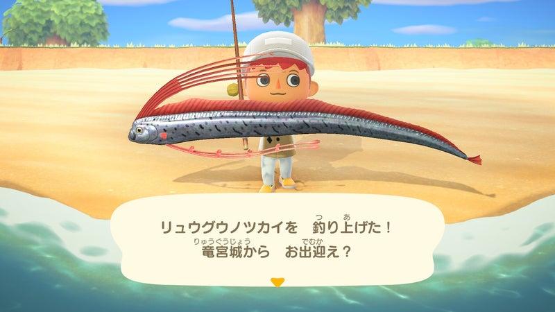 鯛 値段 あつ森