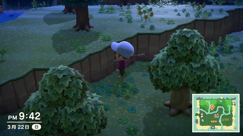 あつ森 はしご作り方