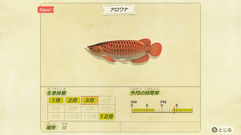 南半球 あつ 森魚 【あつまれどうぶつの森】ゴールデントラウトの出現時期と場所、値段...