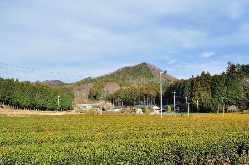 鶏足山・焼森山117