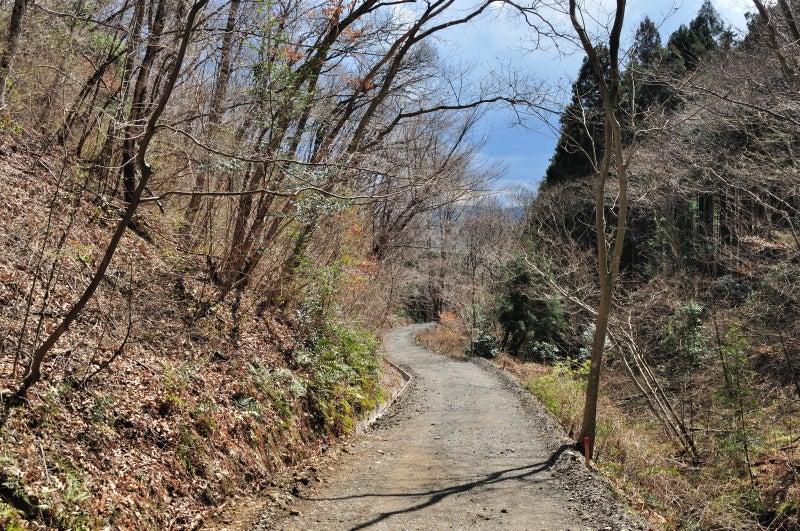 鶏足山・焼森山161