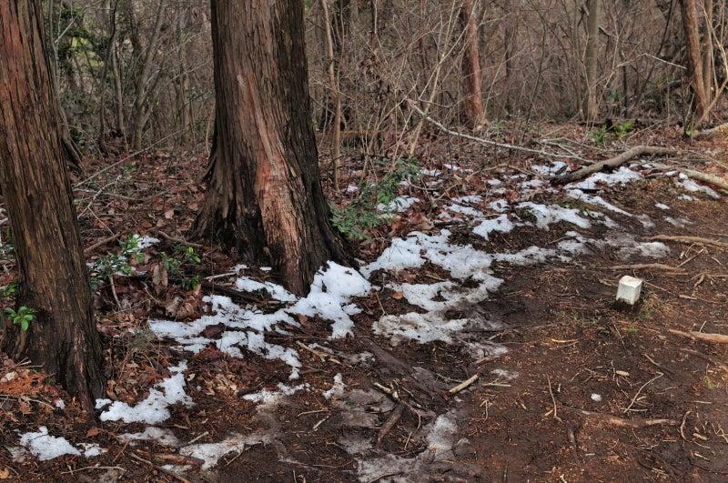 鶏足山・焼森山123