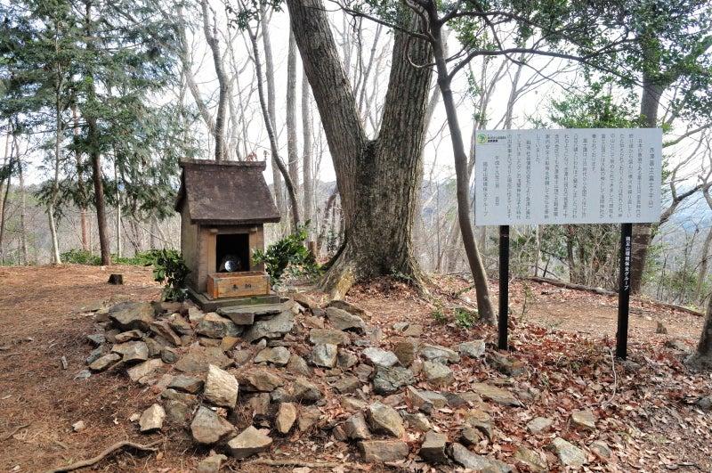鶏足山・焼森山119