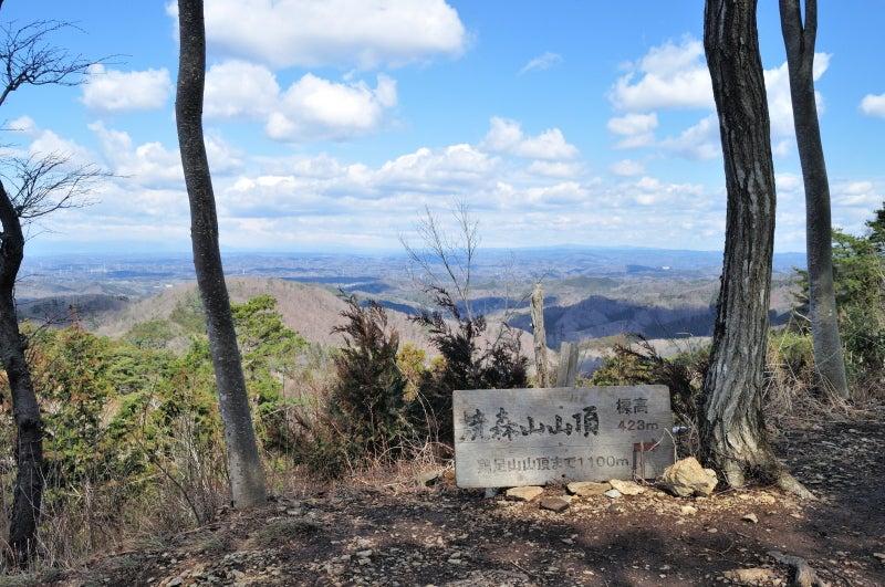 鶏足山・焼森山152