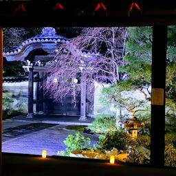 画像 【京都】秀吉が宿所にしていた日蓮宗大本山「妙顕寺」でいただいたステキな【限定御朱印】 の記事より 11つ目
