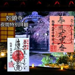 画像 【京都】秀吉が宿所にしていた日蓮宗大本山「妙顕寺」でいただいたステキな【限定御朱印】 の記事より 34つ目