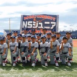 画像 新コロに負けるな! 学童野球NSジュニア選手募集です!! の記事より 5つ目