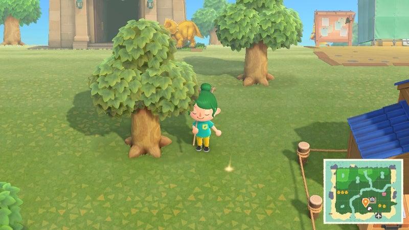 あつ 森 かね の なる 木 育た ない