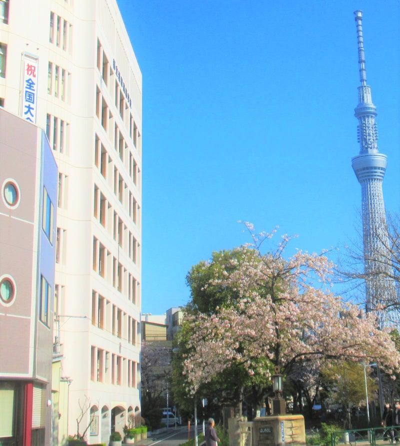 台東区の総合病院一覧表。「山谷堀公園」。一筋の二日月。