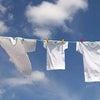 幸せを感じる時ーーーー今朝の洗濯干し からの画像