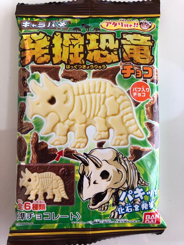 恐竜 キャラパキ 発掘
