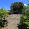 ビンタン島南部ヘリテージツアー その1 ビンタン島、華僑のノスタルジアの画像